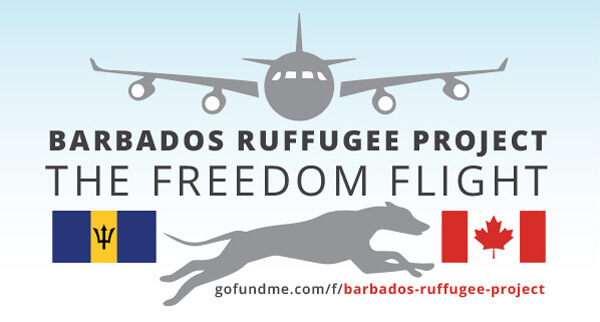 Barbados Ruffugge Project, Freedom Flight